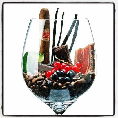 olfato-vinho