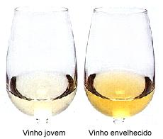 vinho-jovem-branco