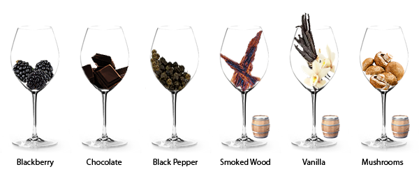 frequent-aromas-in-shiraz.png