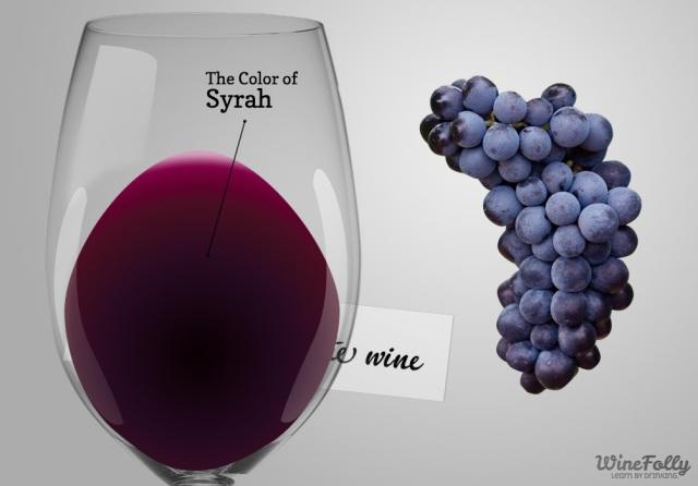 Syrah-wine-guide.jpg