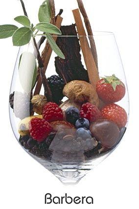 1becd11e14b0e5025f42f0ec66bb2c5d--wine-cheese-sommelier