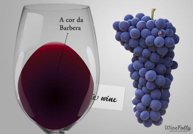 barbera-uva-vinho.jpg