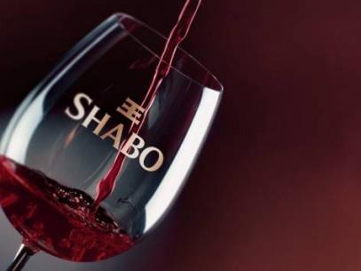 shabo4-407x305.jpg