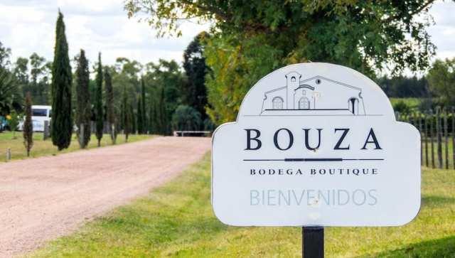 destinoAlgum-bodega-boauza-uruguay-4