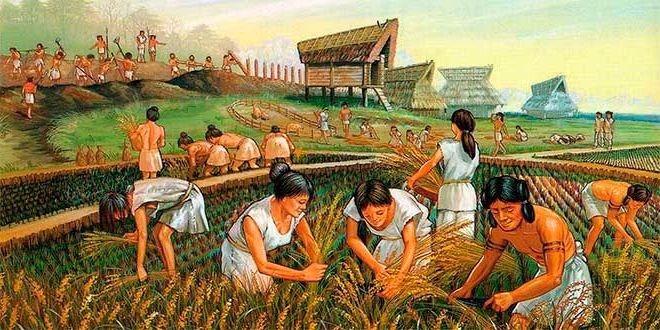 neolitico-agricultura.jpg